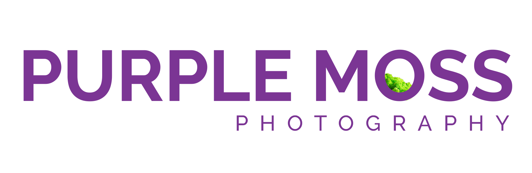 Utah Branding Photographer | Purple Moss